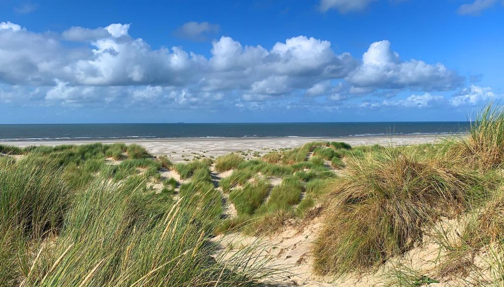 duinen Midsland aan Zee